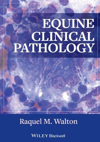 9780813817194: Equine Clinical Pathology