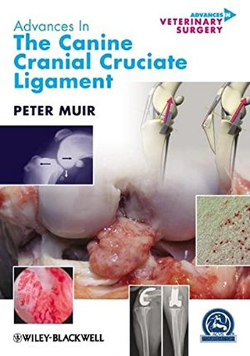 9780813818528: Advances in the Canine Cranial Cruciate Ligament (AVS Advances in Veterinary Surgery)