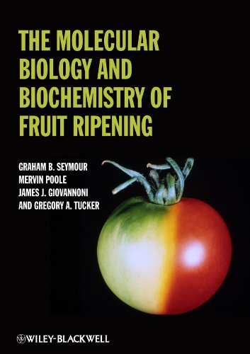 9780813820392: The Molecular Biology and Biochemistry of Fruit Ripening