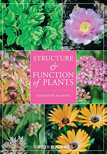 Structure and Function of Plants: Jennifer W. MacAdam
