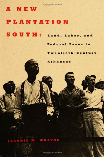 9780813916552: A New Plantation South: Land, Labor, and Federal Favor in Twentieth-Century Arkansas (Carter G. Woodson Institute Series)