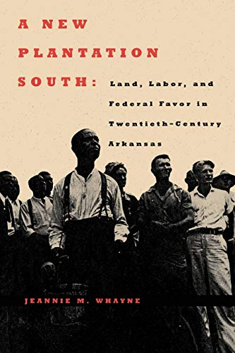 9780813925943: A New Plantation South: Land, Labor, and Federal Favor in Twentieth-Century Arkansas (Carter G. Woodson Institute Series)
