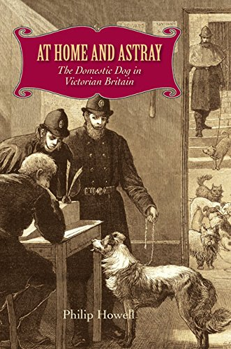 At Home and Astray: The Domestic Dog in Victorian Britain: Howell, Philip