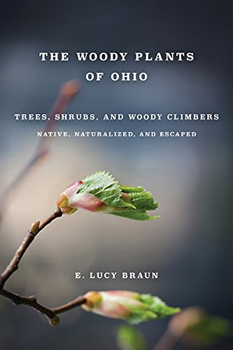 WOODY PLANTS OF OHIO: TREES, SHRUBS AND: BRAUN, E. LUCY