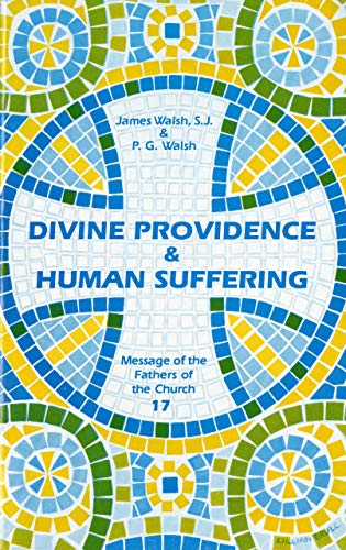 9780814653289: Divine Providence and Human Suffering