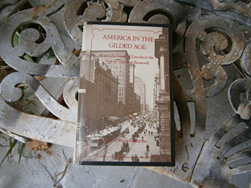 9780814713877: America in the Gilded Age