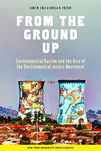 9780814715376: From the Ground Up: Environmental Racism and the Rise of the Environmental Justice Movement (Critical America)