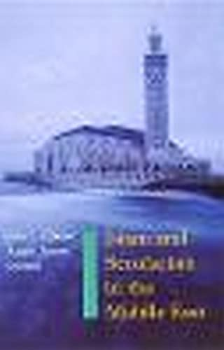 9780814782606: Islam and Secularism in the Middle East