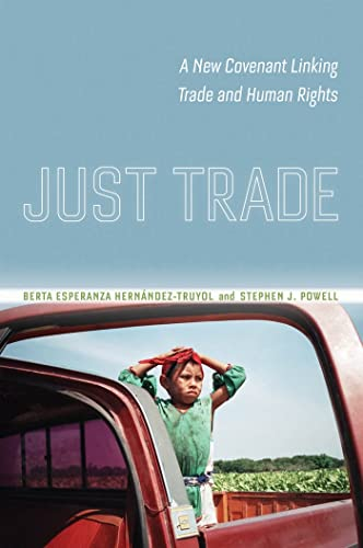 9780814785799: Just Trade: A New Covenant Linking Trade and Human Rights