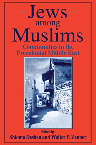 9780814796757: Jews Among Muslims: Communities in the Precolonial Middle East