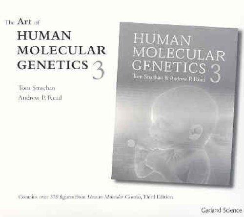 9780815341833: Human Molecular Genetics