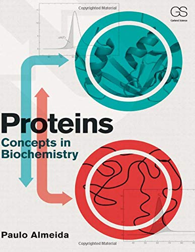 9780815345022: Proteins: Concepts in Biochemistry