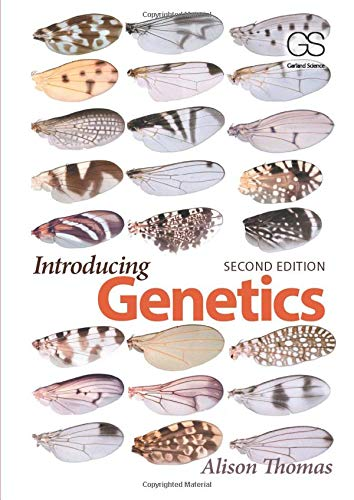 9780815345091: Introducing Genetics: From Mendel to Molecules