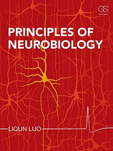 Principles of Neurobiology: Luo, Liqun