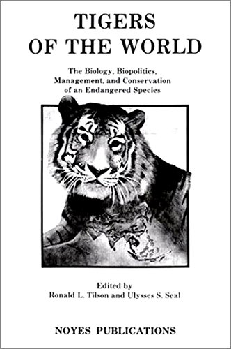 tigers of the mountain essay