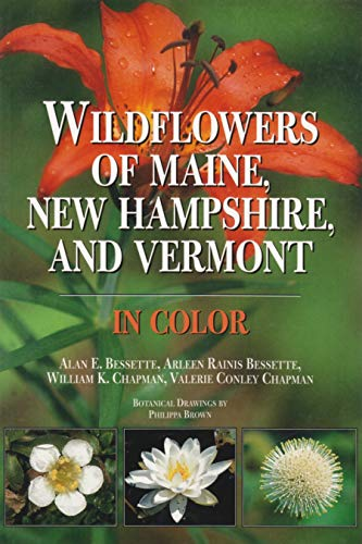 9780815628033: Wildflowers of Maine, New Hampshire, and Vermont in Color