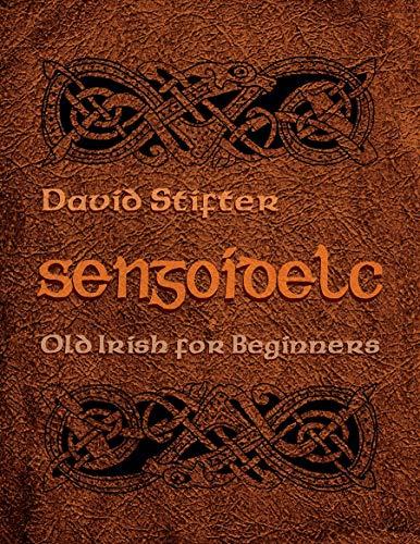 9780815630722: Sengoidelc: Old Irish For Beginners (Irish Studies)