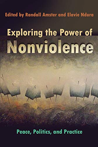9780815633402: Exploring the Power of Nonviolence: Peace, Politics, and Practice (Syracuse Studies on Peace and Conflict Resolution)