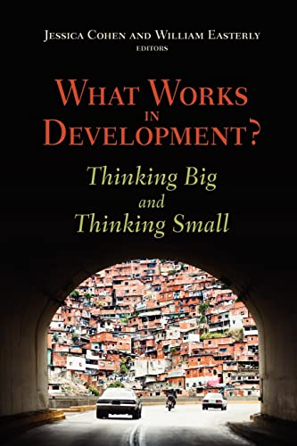 9780815702825: What Works in Development?: Thinking Big and Thinking Small