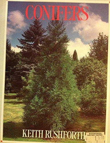 9780816017355: Conifers