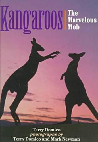 Kangaroos: The Marvelous Mob: Domico, Terry