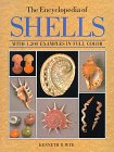 9780816027026: The Encyclopedia of Shells