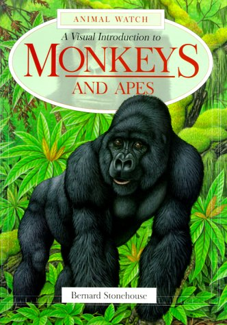 9780816039272: A Visual Introduction to Monkeys and Apes (Animal Watch Series)