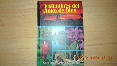 9780816399062: Vislumbres Del Amor De Dios