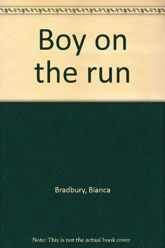 9780816431397: Boy on the run