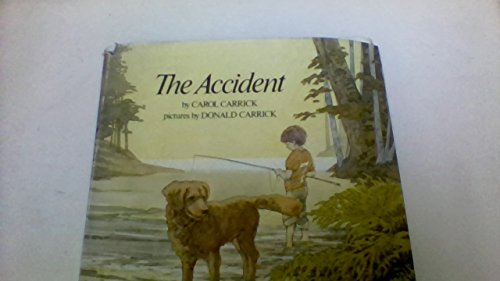 9780816431724: The accident