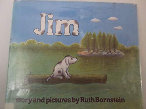 9780816432042: Jim