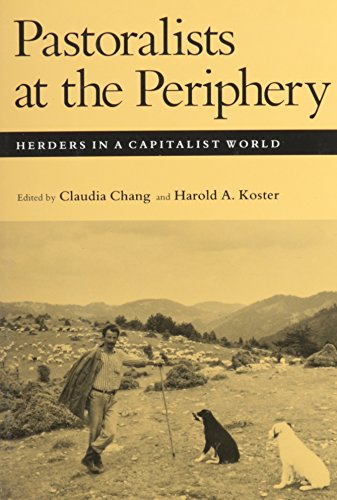 9780816514304: Pastoralists at the Periphery: Herders in a Capitalist World