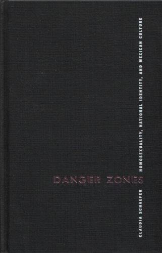 9780816516674: Danger Zones: Homosexuality, National Identity, and Mexican Culture