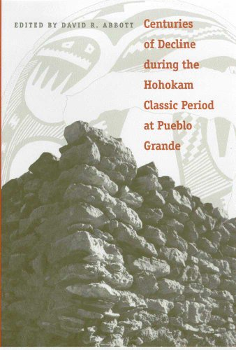 Centuries of Decline During the Hohokam Classic Period at Pueblo Grande (Hardback): David R. Abbott