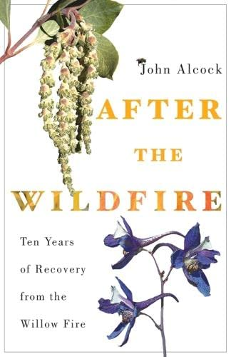 9780816534036: After the Wildfire: Ten Years of Recovery from the Willow Fire
