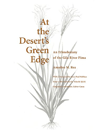 At the Desert's Green Edge: An Ethnobotany of the Gila River Pima (Paperback): Amadeo M. Rea