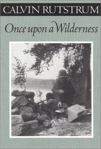 9780816640638: Once upon a Wilderness