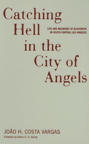 9780816641680: Catching Hell In The City Of Angels: Life And Meanings Of Blackness In South Central Los Angeles (Critical American Studies)