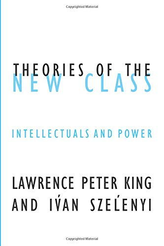 9780816643448: Theories Of The New Class: Intellectuals And Power (Contradictions of Modernity)