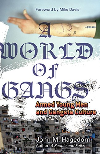 9780816650668: A World of Gangs: Armed Young Men and Gangsta Culture (Globalization and Community)