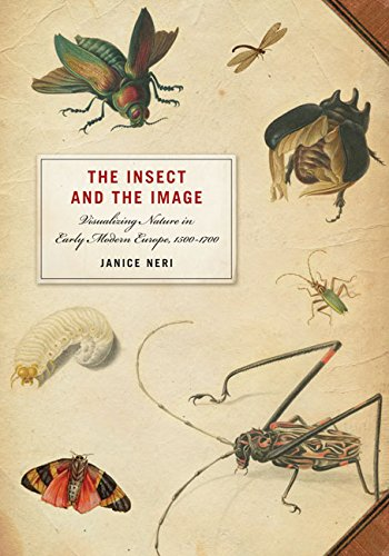 9780816667642: The Insect and the Image: Visualizing Nature in Early Modern Europe, 1500-1700