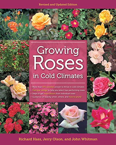 Growing Roses In Cold Climates: Hass, Richard and Olson, Jerry and Whitman, John
