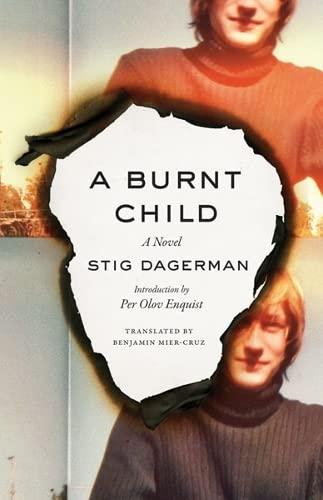 9780816677993: A Burnt Child