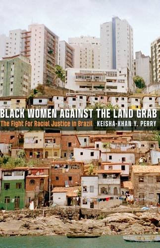 9780816683239: Black Women against the Land Grab: The Fight for Racial Justice in Brazil