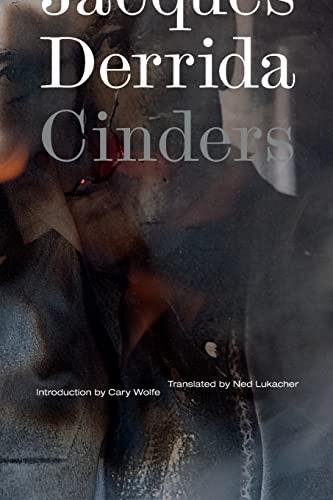 9780816689545: Cinders