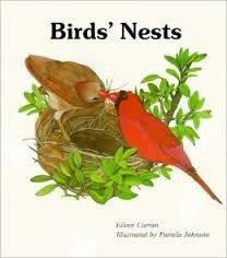 9780816703418: Bird's Nest