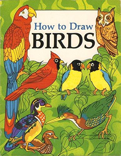 How to Draw Birds: Soloff-Levy, Barbara