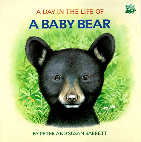 A Day in the Life of a Baby Bear: The Cub's First Swim: Peter Barrett; Susan Barrett