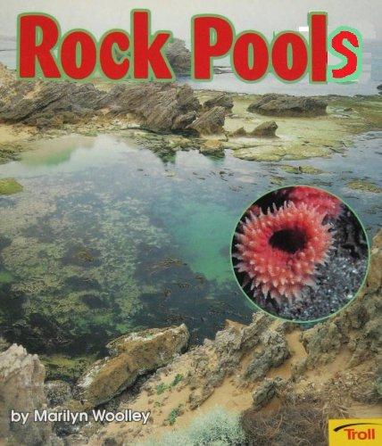 Rock Pools (Momentum Literacy Program, Step 2 Level D)