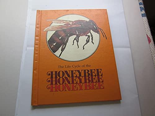 9780817212568: The Honeybee